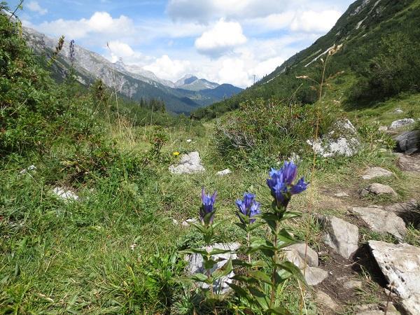 enzyan und berge1