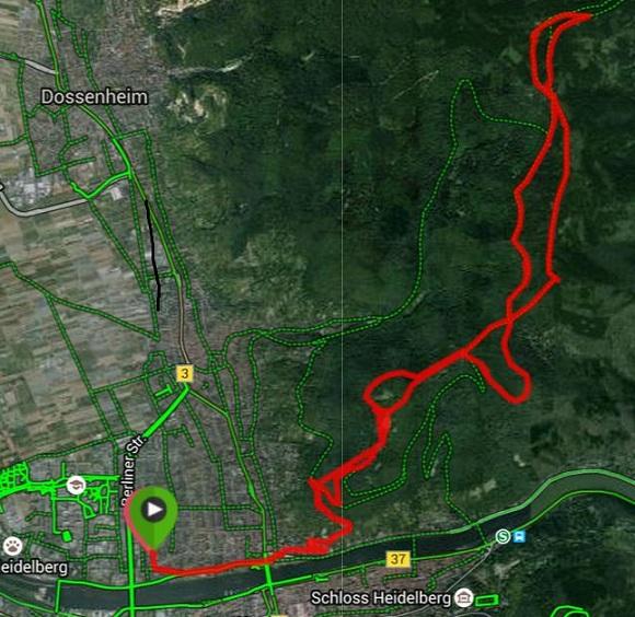 2015-06-21_Heidelberg-Weißer Stein